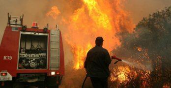 Πυροσβέστης τιμωρήθηκε για φθορά στα λάστιχα του οχήματος που χρησιμοποίησε σε κατάσβεση πυρκαγιάς σε δασική περιοχή
