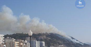 Υπό έλεγχο η πυρκαγιά στη περιοχή Αγίου Στεφάνου
