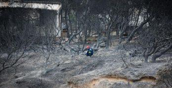 πυρκαγιά αλληλεγγύη στους πληγέντες